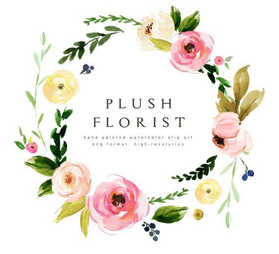 Aquarell Blume Clipart-Plüsch Florist/einzelne PNG