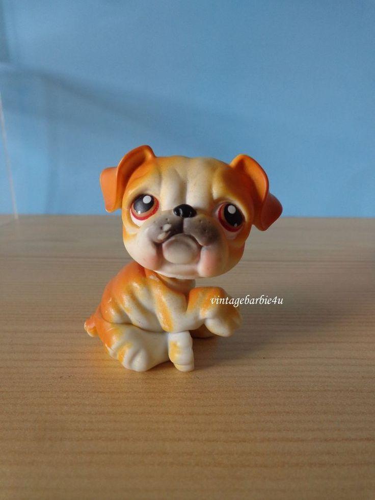 Littlest Pet Shop LPS Orange Cream English Bull Dog #46 Red Brown Dot Eyes #Hasbro