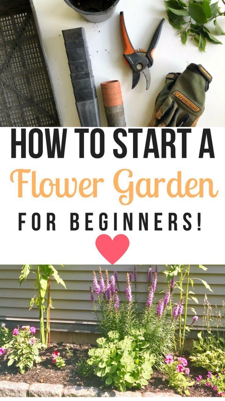 So Starten Sie Einen Blumengarten Fur Anfanger Eine Schritt Fur Schritt Anleitung Garten Schoner Blumengarten Tipps Fur Organischen Gartenbau Bluhende Pflanzen
