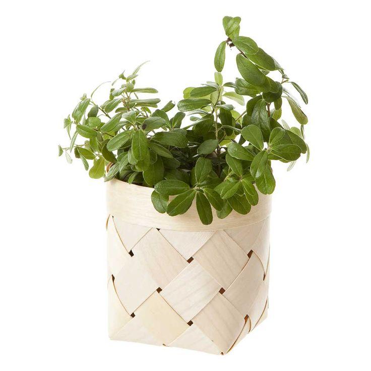 Verso Viilu Small Birch Basket | Finnish Design | www.homearama.co.uk | #verso #versodesign #birchbasket #homeaccessories #finnishdesign