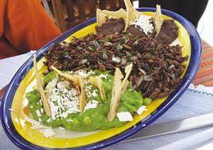 Gastronomía Oaxaqueña.- Chapulines