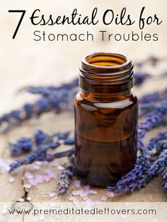 7 Essential Oils for Stomach Troubles - These essential oils for stomach problems can help sooth stomach pain, minimize nausea, and even help kill germs.