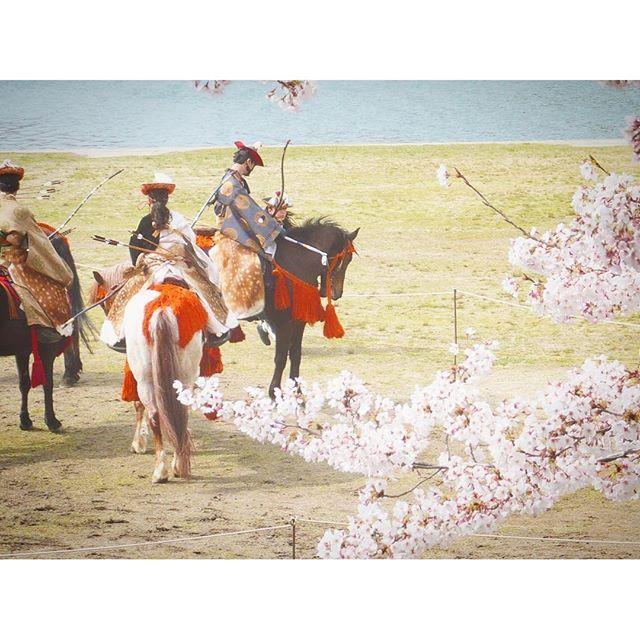 【yktb810】さんのInstagramをピンしています。 《2009年4月 彼(現・夫)と行った岡崎城。 * 徳川家ゆかりのお城やお寺のある岡崎。岡崎城の周りの岡崎公園は桜の名所で、桜祭りは大賑わい。 * この日は、家康公行列を行っており、道路を閉鎖して武将に扮した人々の大名行列を見たり、公園前の河川敷で流鏑馬やダンスを見たり。 * 写真は、流鏑馬の順番を待つ武士の方々。まるで江戸時代にタイムスリップしたよう。 * * #日本 #japan #愛知 #aichi #岡崎 #岡崎市 #okazaki #岡崎城 #岡崎城桜祭り #家康公行列 #徳川家ゆかりの地 #流鏑馬 #桜 #cherryblossom #江戸時代にタイムスリップ #武士と桜 #ファインダー越しの私の世界 #写真好きな人と繋がりたい #写真部 #カメラ好きな人と繋がりたい #カメラ女子 #ダレカニミセタイケシキ #旅行 #trip #travel #国内旅行 #yukatabi》