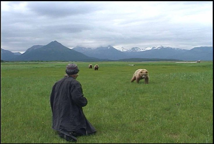 GRIZZLY MAN -Timothy Treadwell