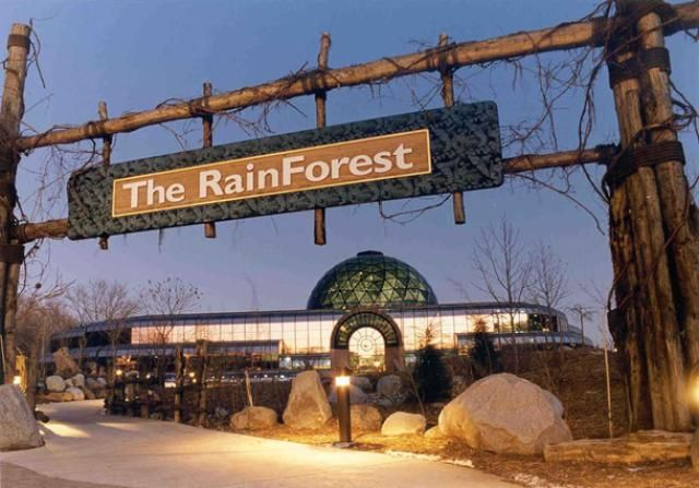 Best Things to Do with Your Kids in Cleveland: Cleveland Metroparks Zoo