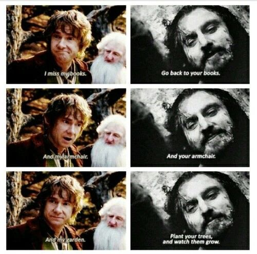 He remembered everything Bilbo said... Aaaaagggggh :'(