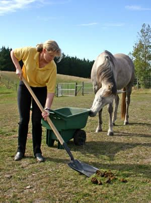 Horse manure:  An easy guide to composting.