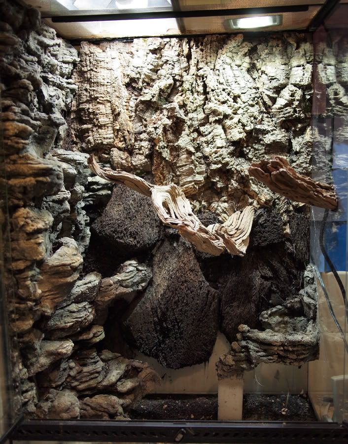 how to make faux rock for lizard tank