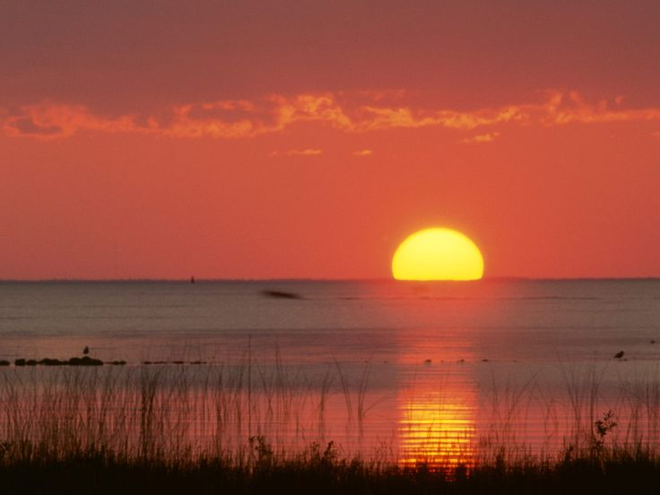 Golden Moment, Gulf of Mexico, Florida - http://imashon.com/w/golden-moment-gulf-of-mexico-florida.html