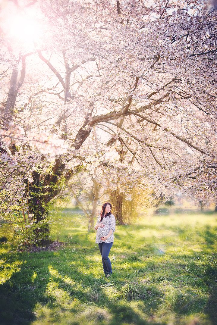 Cherry Blossoms | Chilliwack Maternity Photography