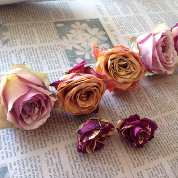 思い出をカタチに♡大切なお花をドライフラワーに - Locari(ロカリ)