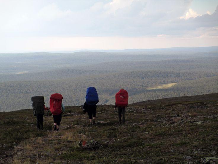 Lemmenjoki National Park, high up.