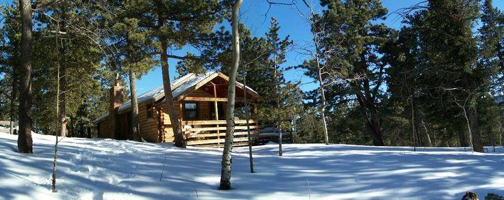 Cabin Rental Choices
