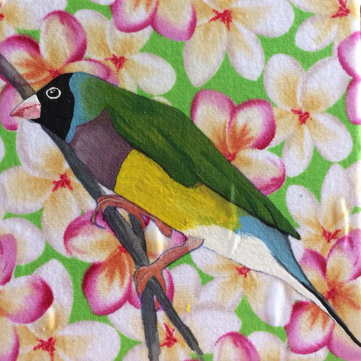 Gouldian finch by Mandy Tootell. Gouache on fabric. Katherine, Northern Territory, Australia.