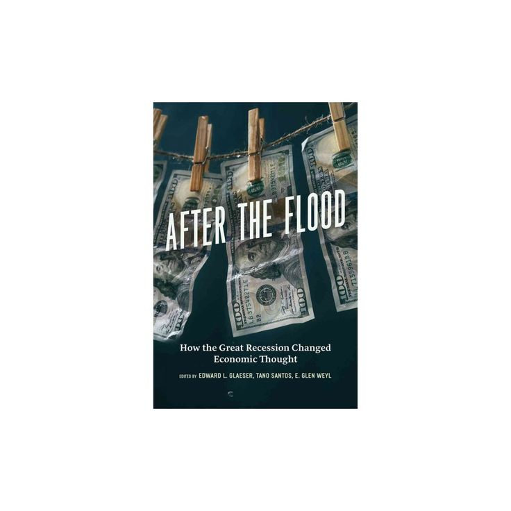 After the Flood : How the Great Recession Changed Economic Thought (Hardcover)