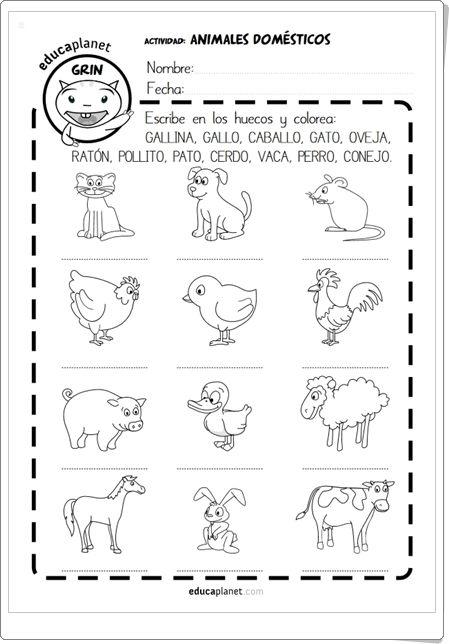 """Animales domésticos"" (Fichas en español e inglés de"