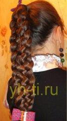 коса из 6 прядей: фото