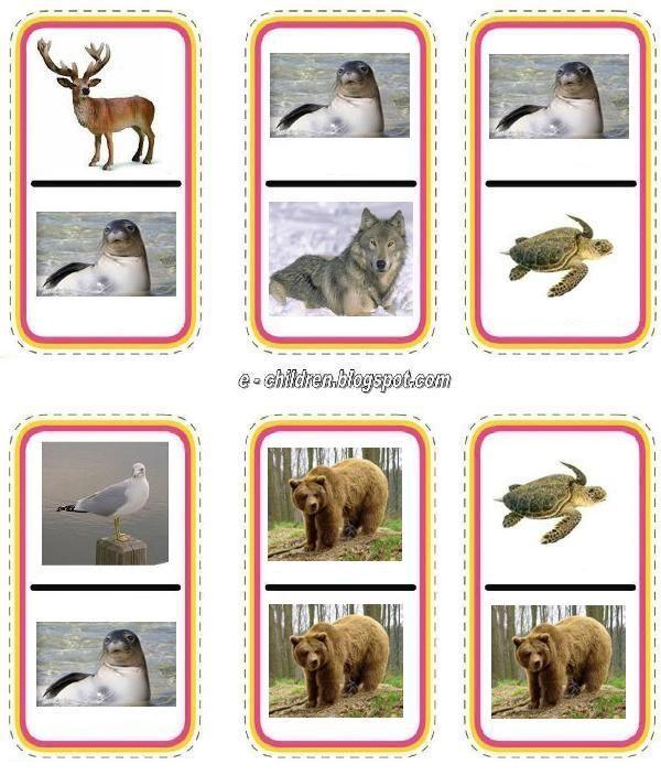 állatok 3