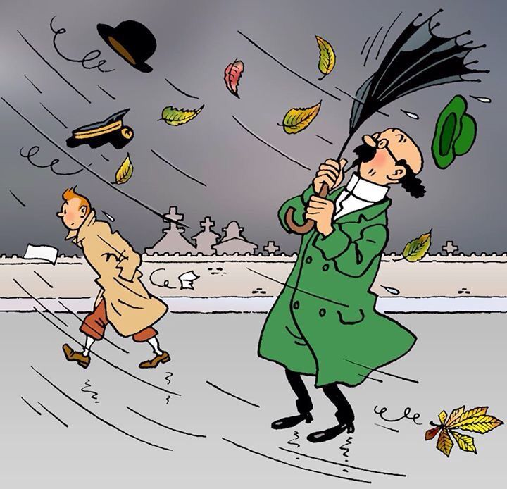 2465 Best Tintin Et Milou Images On Pinterest Tintin