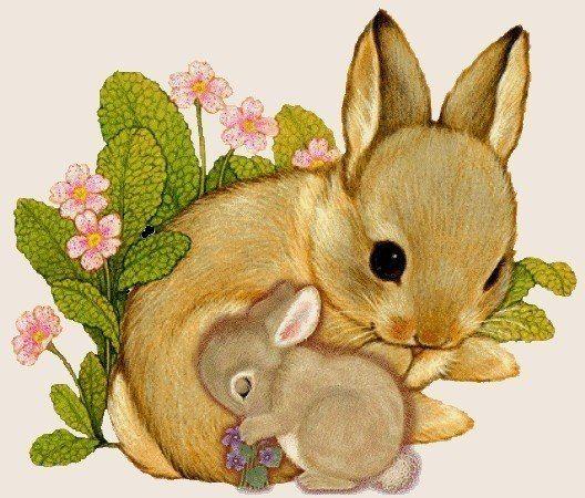 собрала картинка маленький зайчонок улыбнулся маме йовович всегда