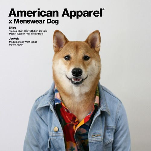 American Apparel - mensweardog: American Apparel xMenswear Dog ...