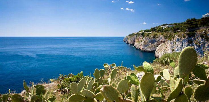 Potreste percorrere tutta la Puglia seguendo gli ulivi, ma per comodità, vi consigliamo di partire da Lecce e lentamente arrivare fino a Leuca, la punta estrema.  È un viaggio tra i sapori e i profumi, fra l'entroterra disseminato di piccoli paesini uno diverso dall'altro e la costa, sempre a portata di mano, frastagliata e ricca di piccole calette. Continua a leggere su http://hitany.it/it/blog/2014/apr/23/la-strada-degli-ulivi-tra-terra-e-mare-230