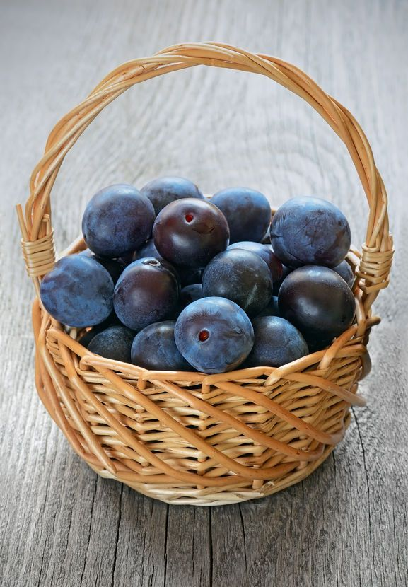 Research is discovering what ancient Japanese and Chinese medicine already knew: That dried plums slow the aging process with respect to bone loss.