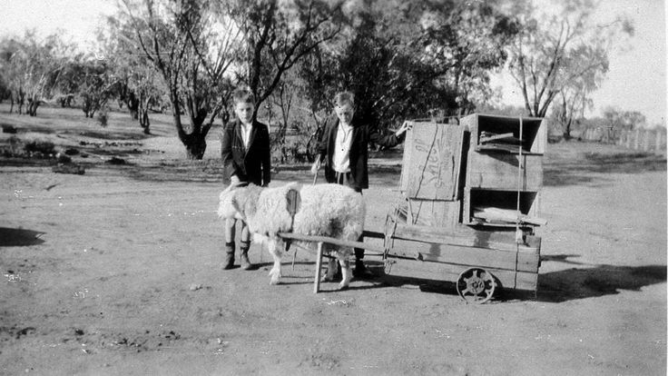 """Two boys with laden goat cart on """"Toorale"""" - Bourke, NSW - State Library of New South Wales"""