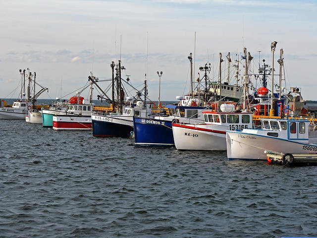 204 best images about new brunswick canada on pinterest for Nova scotia fishing