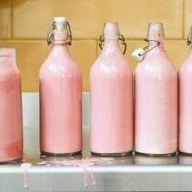 Why Hippos Milk is Pink — 10 Random Facts About Hippos   Facts List