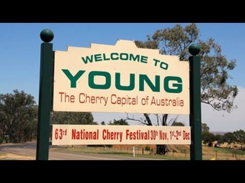 Yowie Sighting (Audio Report #98) near Young, New South Wales