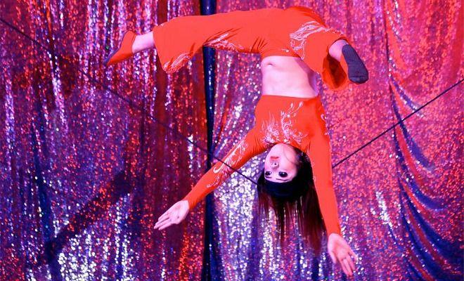 Le Cirque sur l'eau assure la magie de Noël à Bordeaux