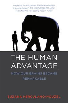 The Human Advantage :  In The Human Advantage: How Our Brains Became Remarkable Suzana Herculano-Houzel weaves together two stories: the story of her scientific career based on her invention of a new technique for counting the number of brain cells in an entire brain and the story of human brain evolution.  Previously counts of neurons in brains of humans and other animals relied on sampling: counting the cells in a slice of tissue and multiplying up to get an estimate. Because of…