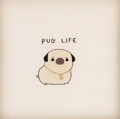 pug cartoon | Tumblr