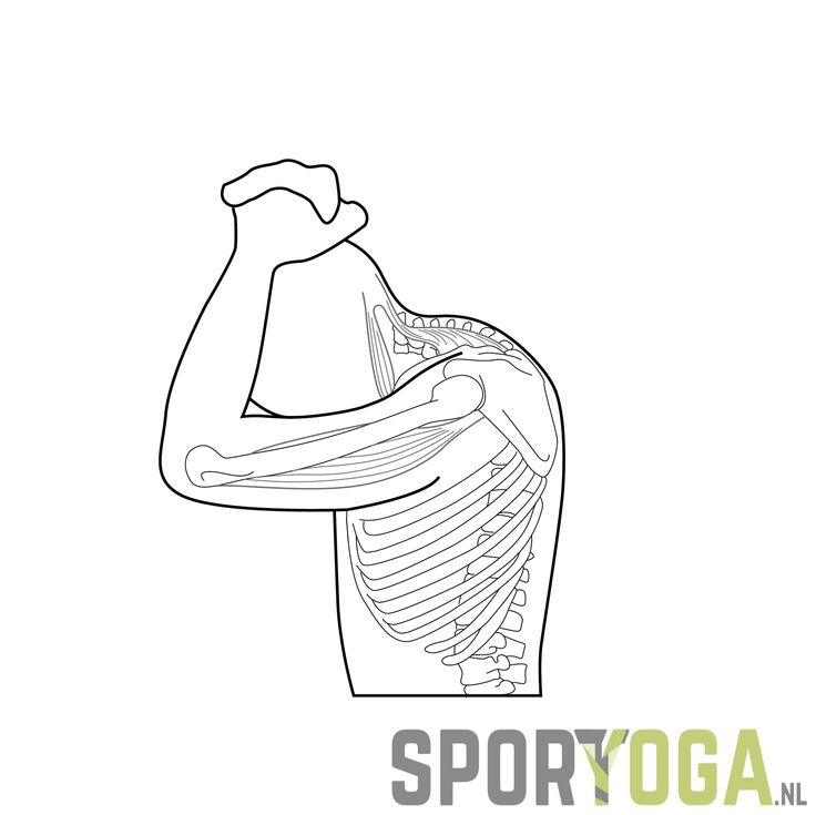 Neck, Back, Shoulder Stretch for sportsyoga and athletesyoga from sportyoga.nl