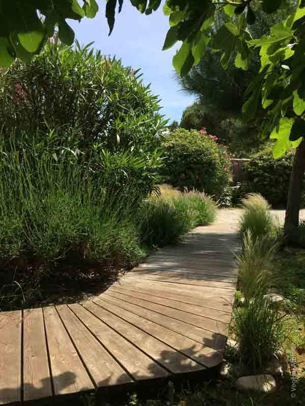 Allée jardin bois bord de mer ile de ré | ▻Décoration ...