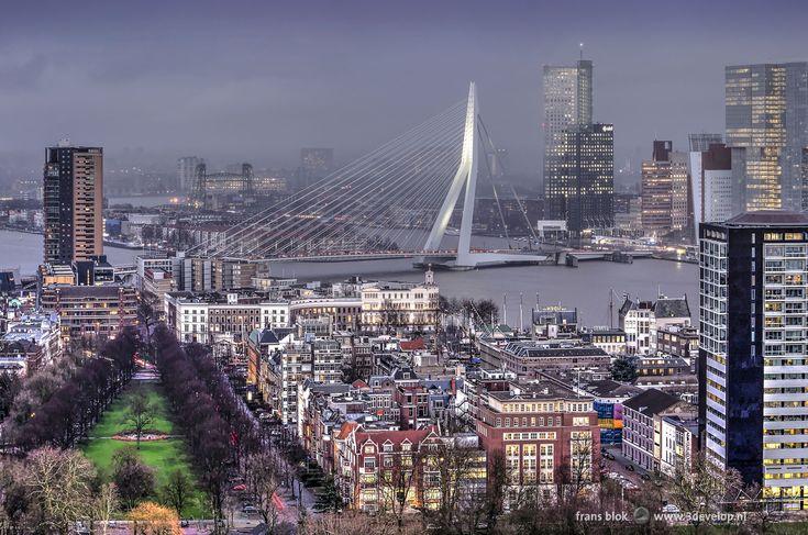We zien hier het Scheepvaartkwartier, ook wel het Nieuwe Werk genoemd, een negentiende eeuwse uitbreidingswijk van Rotterdam, met links de groenstrook van de Parklaan en links de recente Westerlaantoren. Verder op de achtergrond de Nieuwe Maas, de Kop van Zuid, het Noordereiland en natuurlijk de Erasmusbrug.