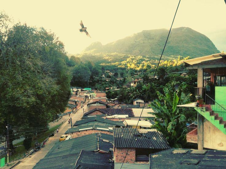 Barrio calle Nueva Bolívar Cauca