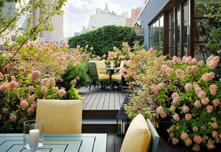 Share Tweet Pin Mail Your Email Hey guys, I'm on this garden kick and have collected a vast volume of exquisite gardens. (link to ...