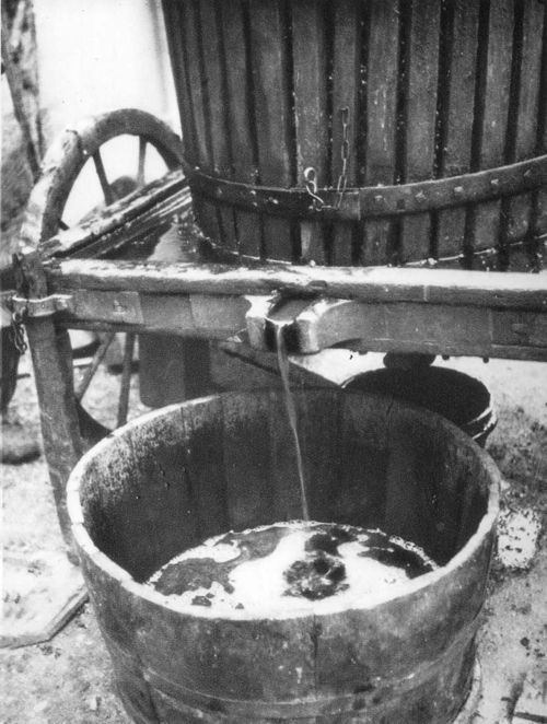 Grape juice flowing from the press (ca 1930)