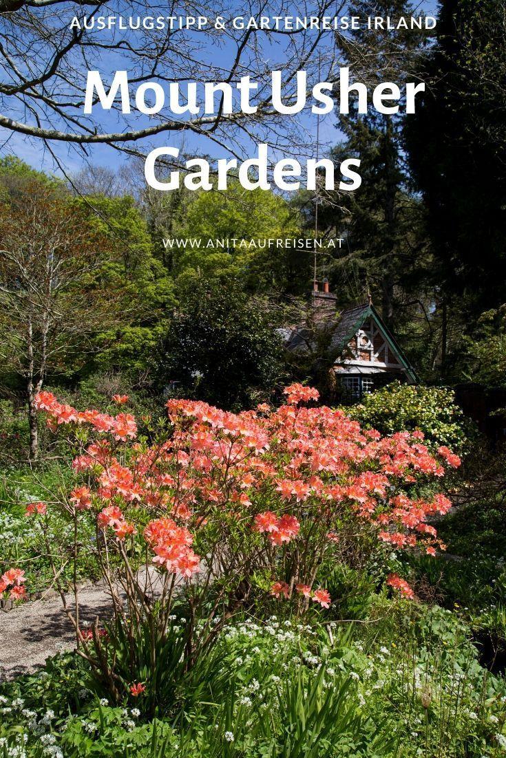Mount Usher Gardens Irlands Wald Voller Wunder Teichlandschafts Botanischer Garten Irland