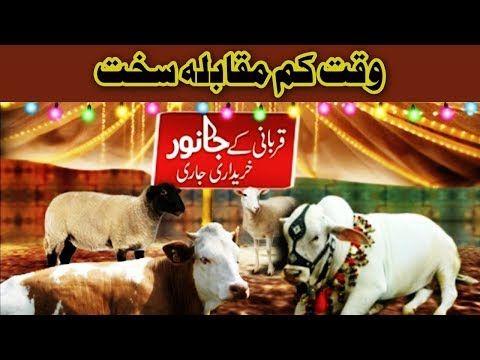 Eid Special Transmission - 1st September 2017 - Dunya News - https://www.pakistantalkshow.com/eid-special-transmission-1st-september-2017-dunya-news/ - http://img.youtube.com/vi/5IJk3KqX-Lo/0.jpg