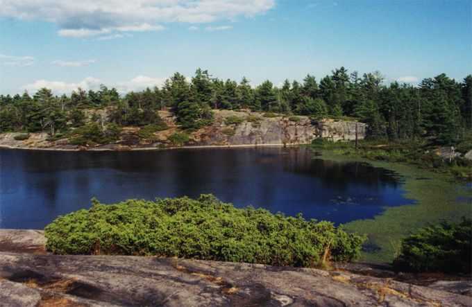 Grundy Lake Provincial Park Review • Nature LoverNature Lover