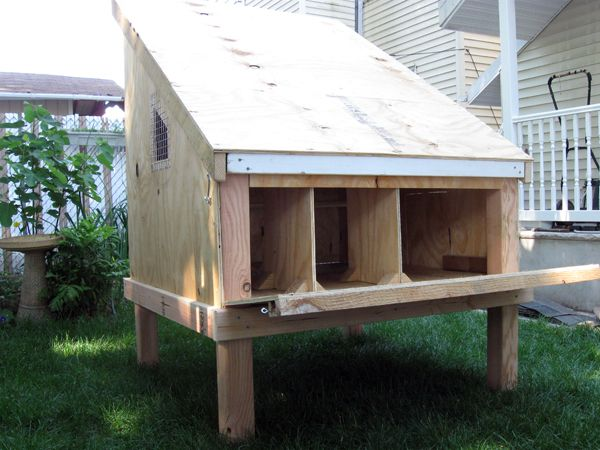 how to build a chicken coop: Tags, Building, Chicken Coops, Chickens, How To, Rai Chicken, Raised Chicken, Hens Houses