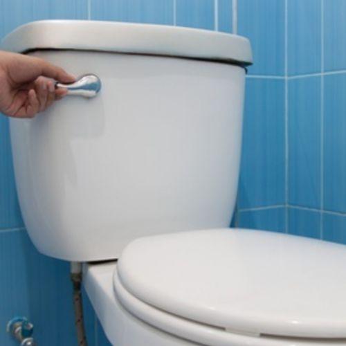 Spoel altijd je toilet door als je terug komt van je vakantie