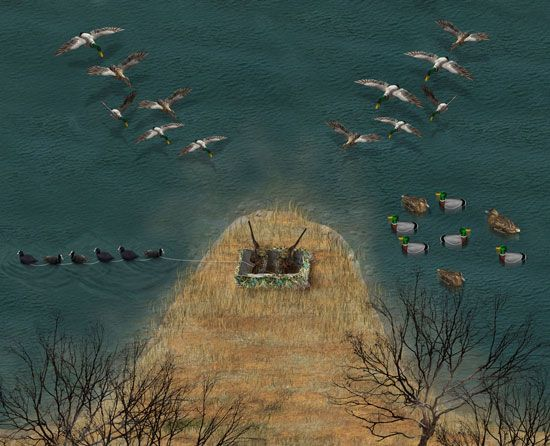 Ridiculously Smart Decoy Strategies