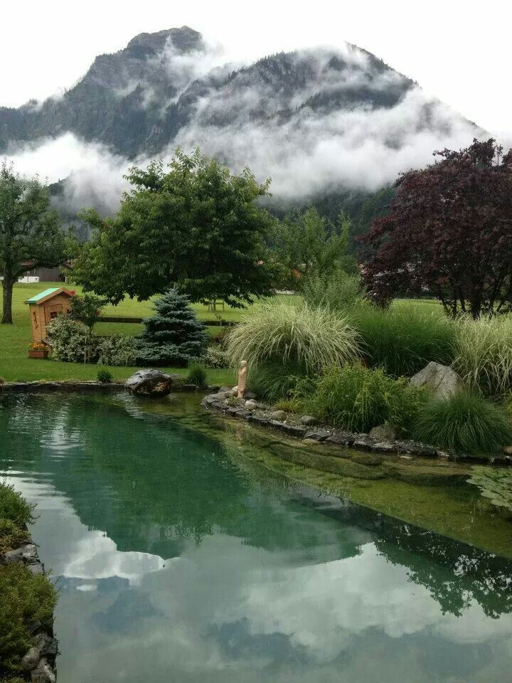 Natural Swimming Pool - Pond Architectural Landscape Design
