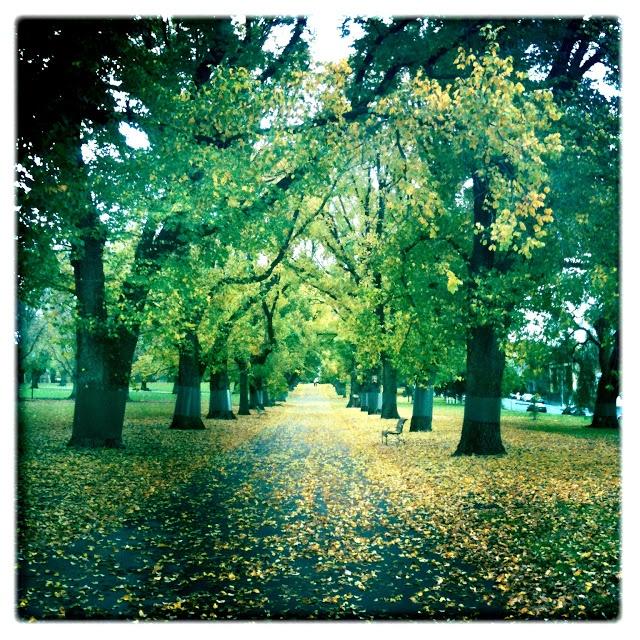Carlton Gardens Melbourne Victoria Australia