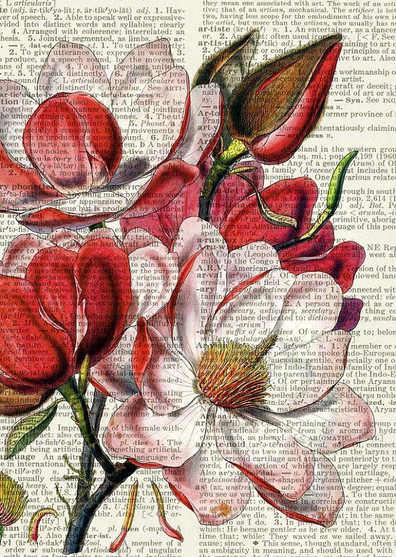 Magnolia print, vintage flower artwork on vintage dictionary page, vintage dicti...