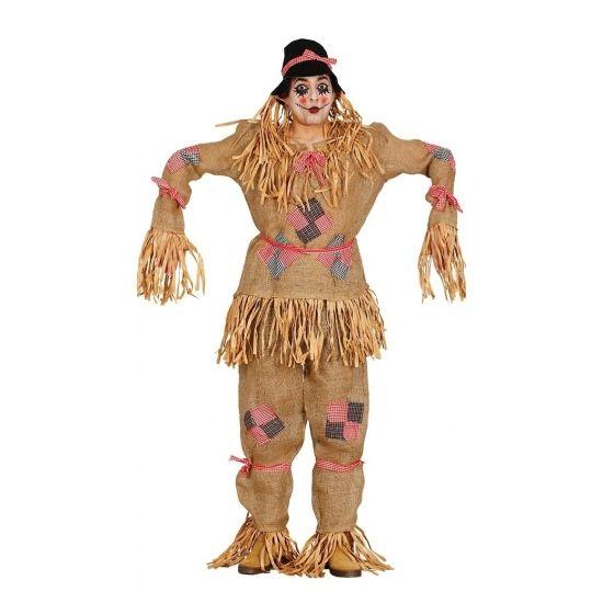 Vogelverschrikker kostuum voor volwassenen. Dit kostuum bevat een jas, broek en hoed. One size model: L/XL. Materiaal: 100% polyester.